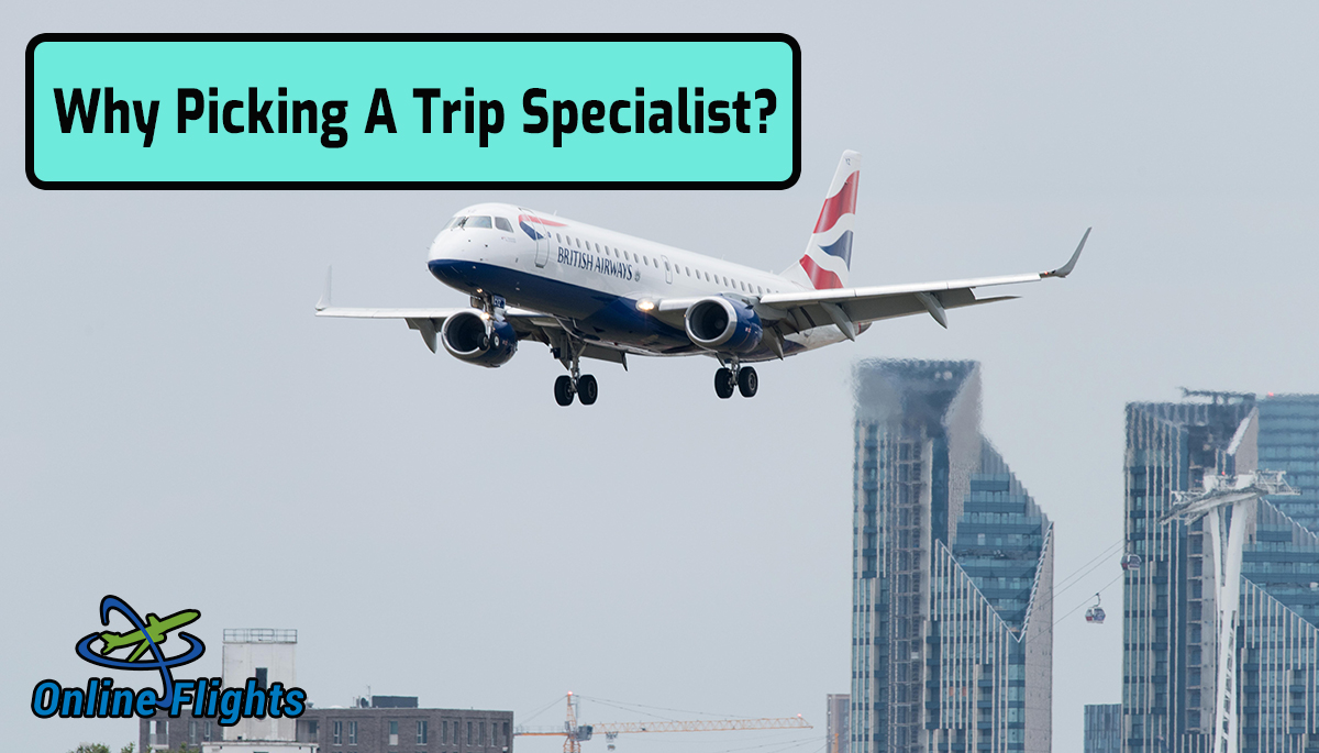 Why Picking A Trip Specialist?